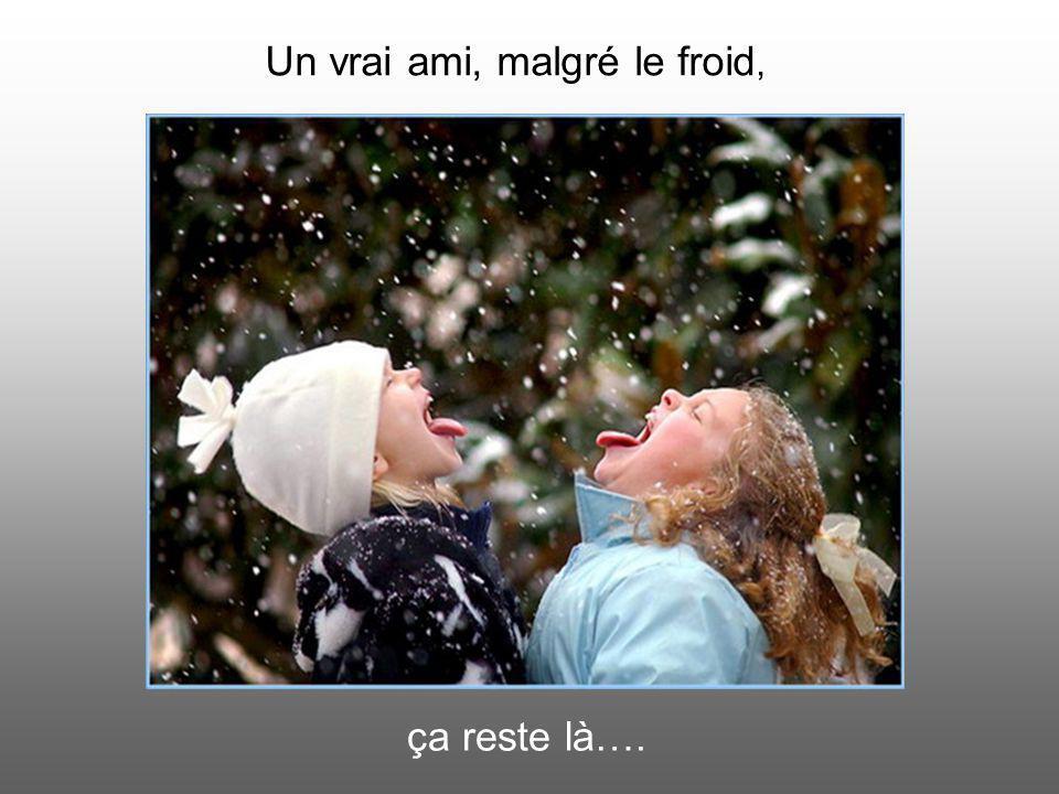Un vrai ami, malgré le froid, ça reste là….