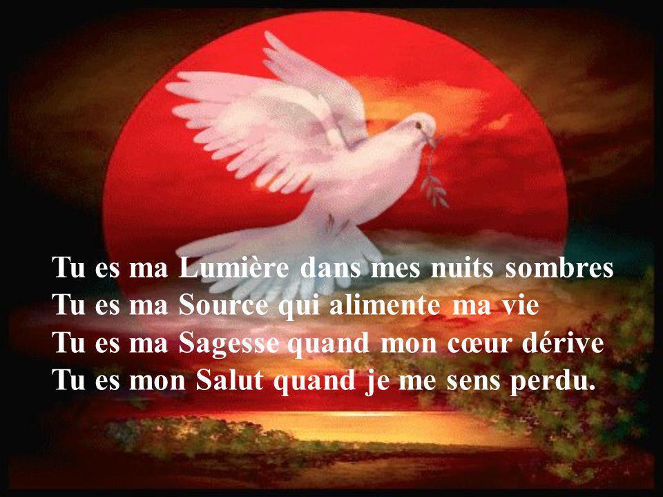 Tu es ma Lumière dans mes nuits sombres Tu es ma Source qui alimente ma vie Tu es ma Sagesse quand mon cœur dérive Tu es mon Salut quand je me sens perdu.