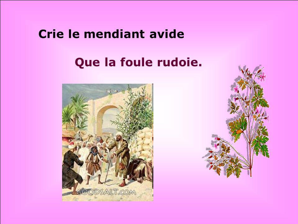 .. « Jésus, Fils de David, Aie donc pitié de moi! »
