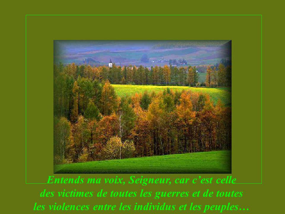 Entends ma voix, Seigneur, car cest celle des victimes de toutes les guerres et de toutes les violences entre les individus et les peuples…