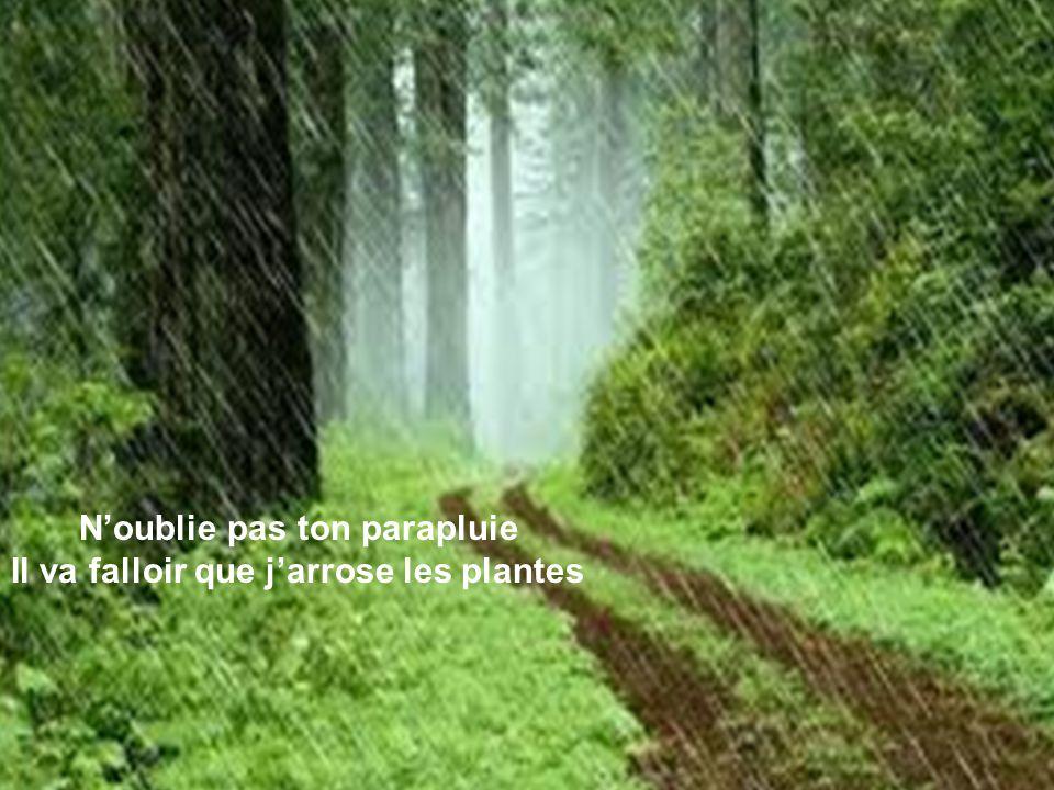 Noublie pas ton parapluie Il va falloir que jarrose les plantes