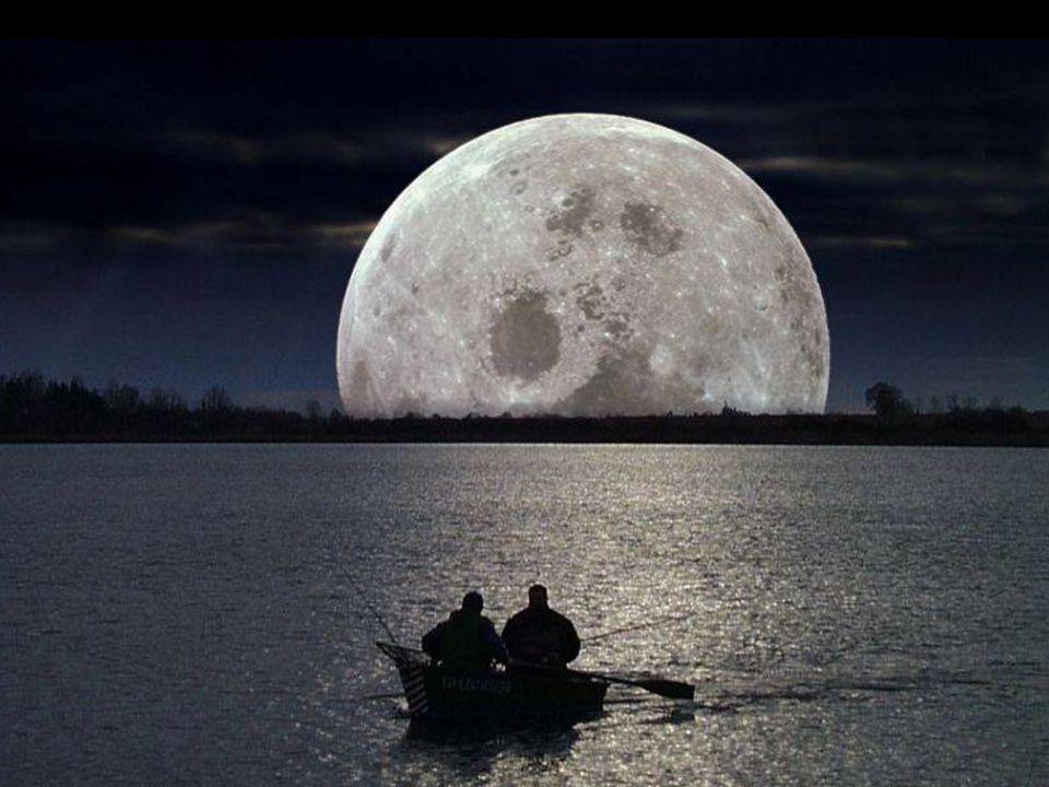 La rêverie est le clair de lune de la pensée. (Jules Renard)