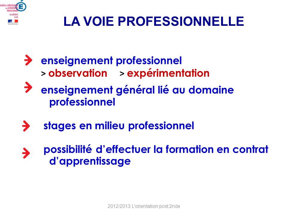 enseignement professionnel > observation > expérimentation enseignement général lié au domaine professionnel stages en milieu professionnel possibilit