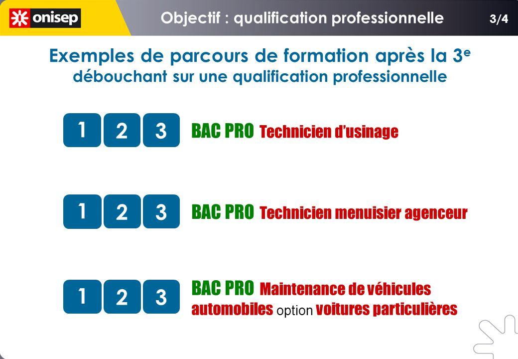 BAC PRO Technicien dusinage 1 23 BAC PRO Technicien menuisier agenceur 1 23 BAC PRO Maintenance de véhicules automobiles option voitures particulières 1 23 3/4 Exemples de parcours de formation après la 3 e débouchant sur une qualification professionnelle
