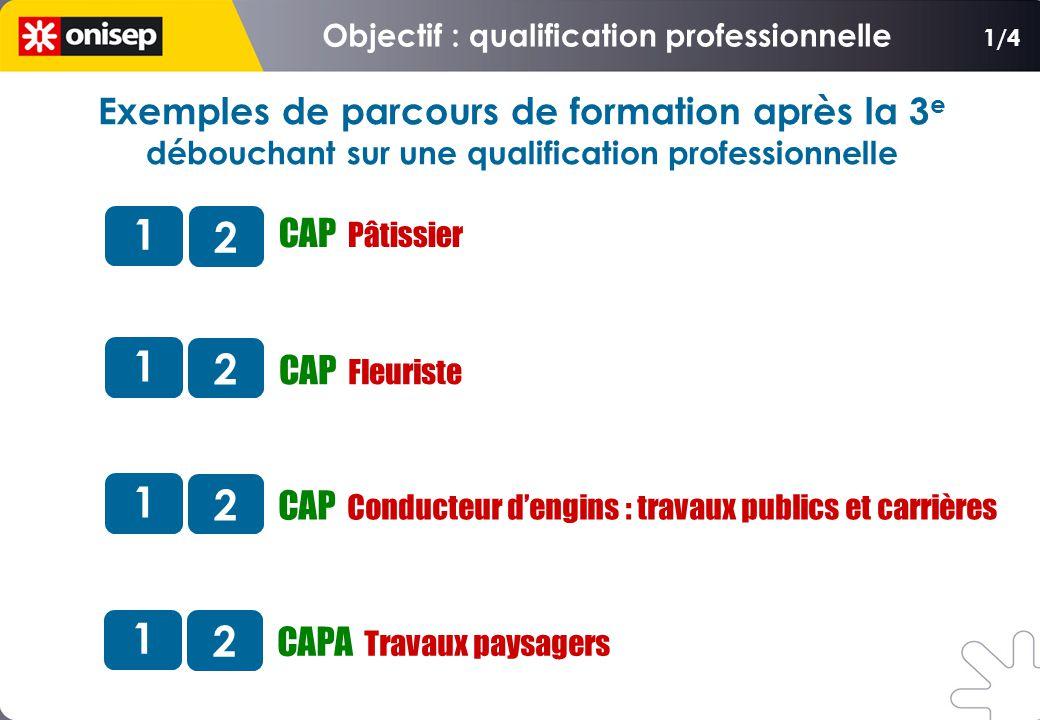 CAP Fleuriste CAP Conducteur dengins : travaux publics et carrières 1 2 CAP Pâtissier 1 2 1 2 CAPA Travaux paysagers 1 2 1/4 Exemples de parcours de f
