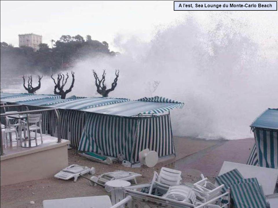Vieux-port de Cannes