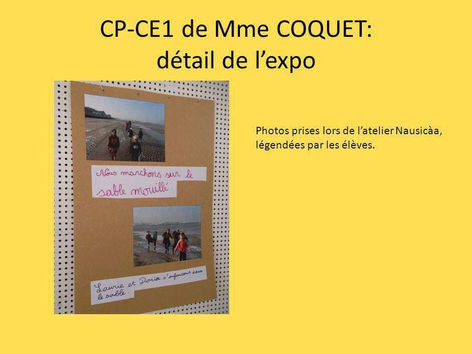CP-CE1 de Mme COQUET: détail de lexpo En référence à un album de jeunesse bien connu des enseignants de Boulogne, les élèves ont produit de jolis petits poissons assortis des adjectifs qualificatifs adéquats!