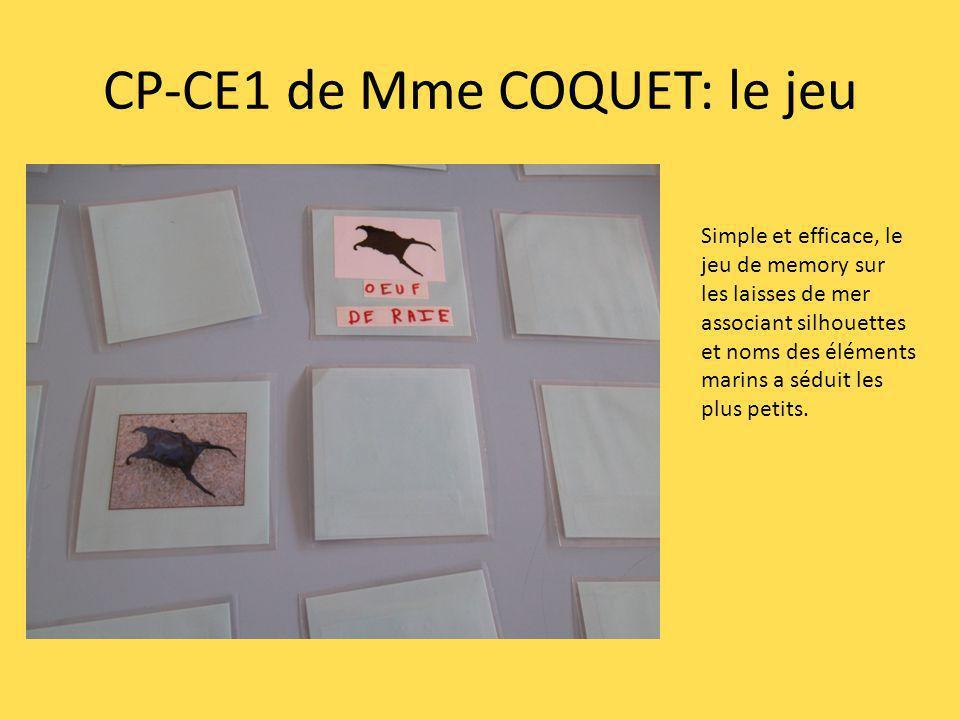 CP-CE1 de Mme COQUET: le jeu Simple et efficace, le jeu de memory sur les laisses de mer associant silhouettes et noms des éléments marins a séduit le
