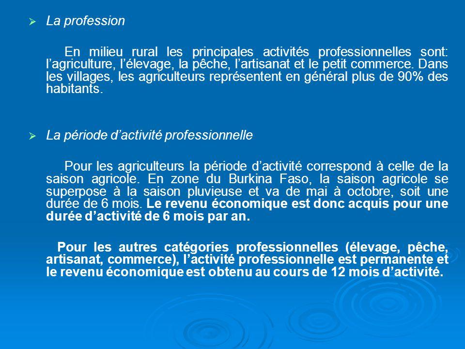 La profession En milieu rural les principales activités professionnelles sont: lagriculture, lélevage, la pêche, lartisanat et le petit commerce. Dans