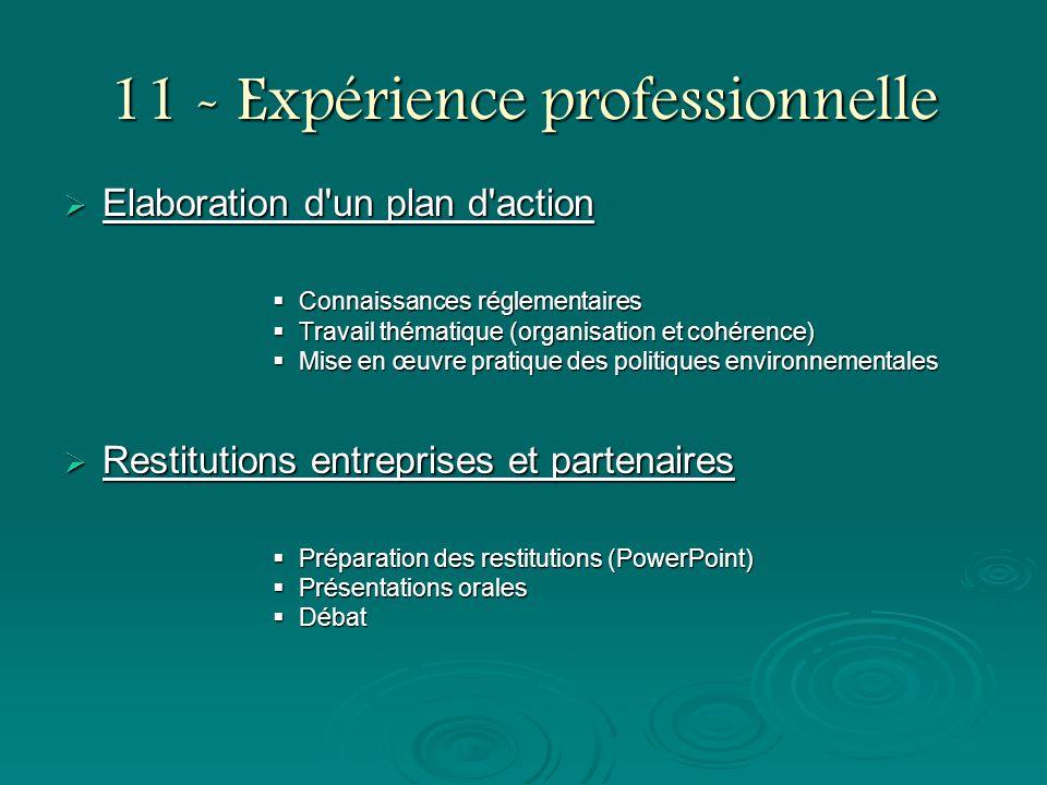 11 - Expérience professionnelle Elaboration d'un plan d'action Elaboration d'un plan d'action Connaissances réglementaires Connaissances réglementaire
