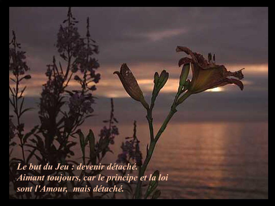 Le but du Jeu : devenir détaché. Aimant toujours, car le principe et la loi sont l'Amour, mais détaché.