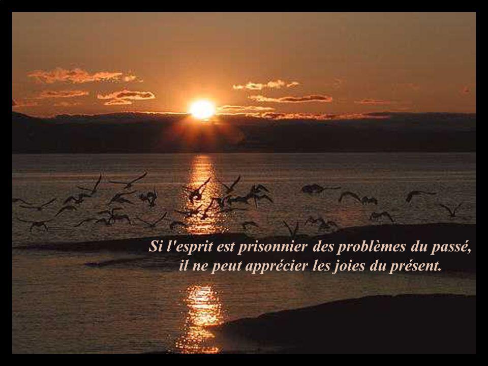 Si l'esprit est prisonnier des problèmes du passé, il ne peut apprécier les joies du présent.