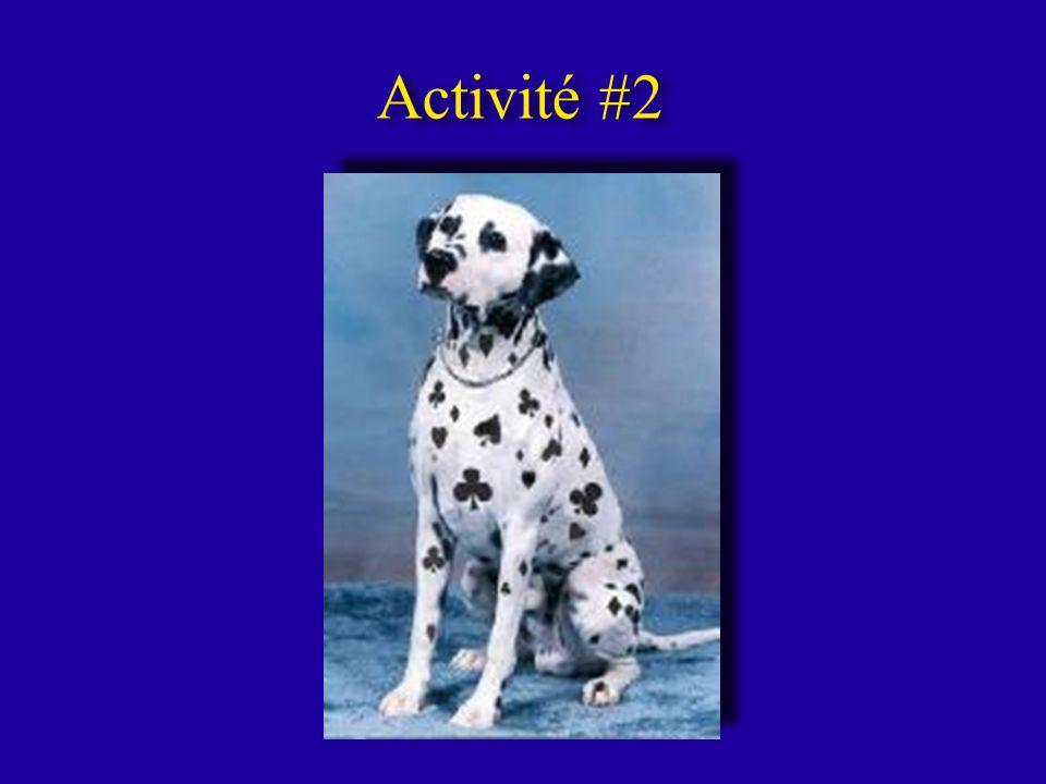 Activité #2