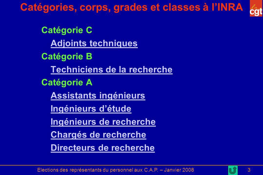 Elections des représentants du personnel aux C.A.P. – Janvier 20083 Catégories, corps, grades et classes à lINRA Catégorie C Adjoints techniques Catég