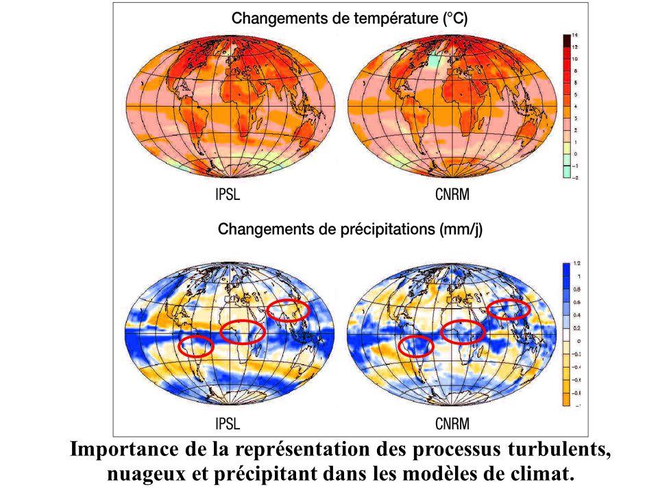 Importance de la représentation des processus turbulents, nuageux et précipitant dans les modèles de climat.