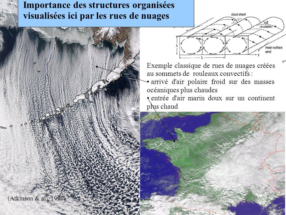 (Atkinson & al., 1996) Importance des structures organisées visualisées ici par les rues de nuages Exemple classique de rues de nuages créées au somme