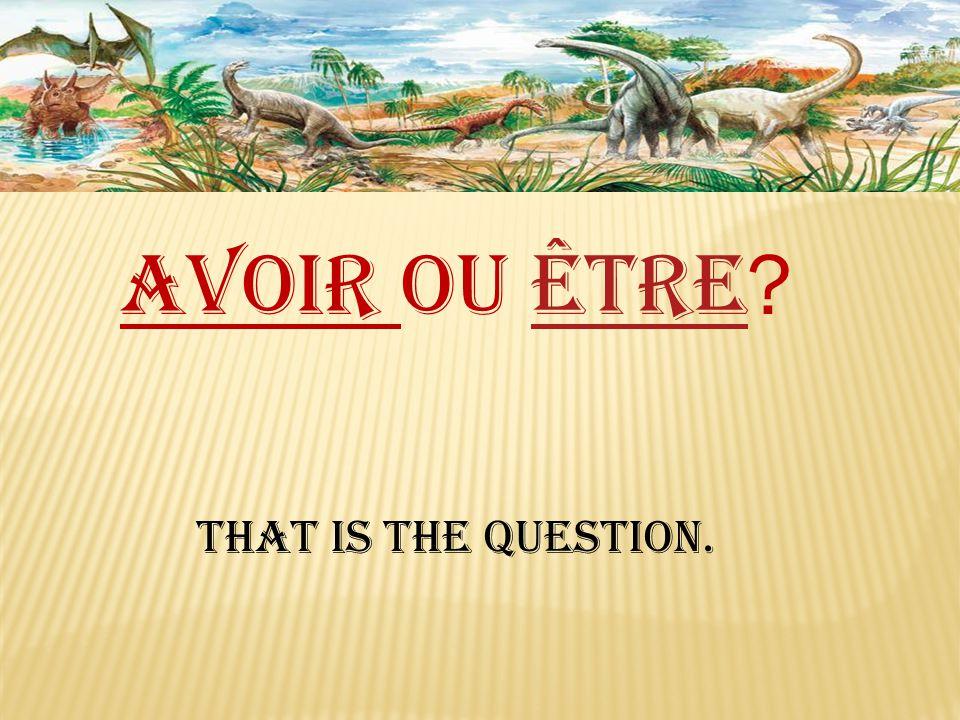 Avoir ou être être That is the question.