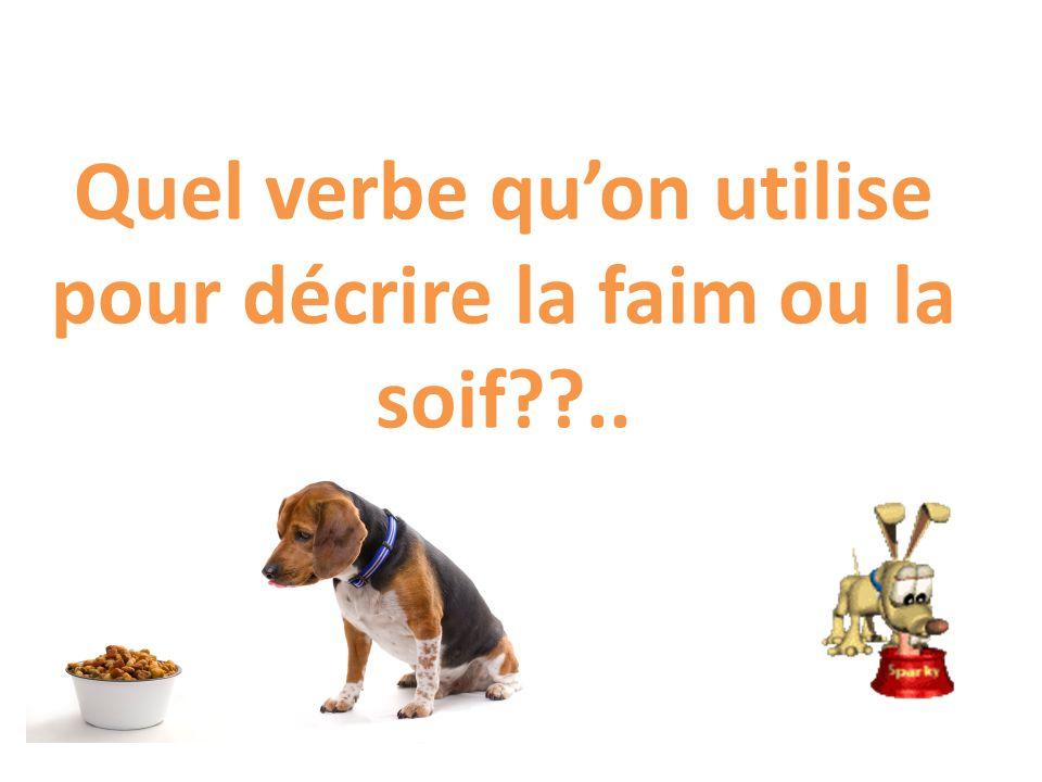 Quel verbe quon utilise pour décrire la faim ou la soif??..