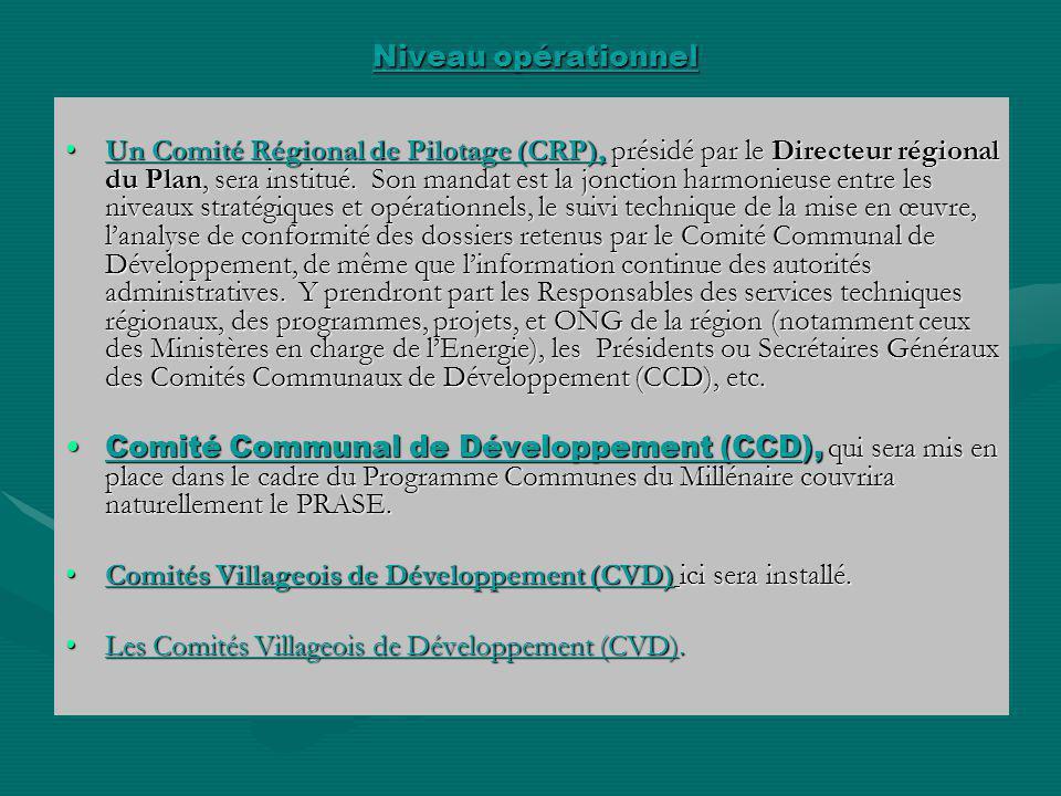 Niveau opérationnel Niveau opérationnel Un Comité Régional de Pilotage (CRP), présidé par le Directeur régional du Plan, sera institué. Son mandat est