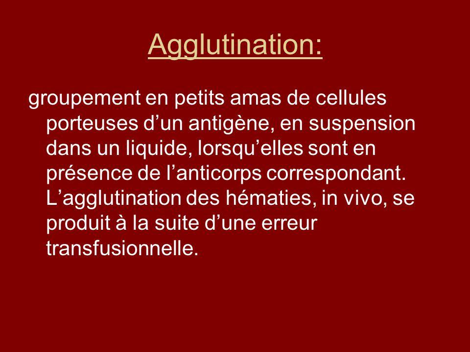 Agglutination: groupement en petits amas de cellules porteuses dun antigène, en suspension dans un liquide, lorsquelles sont en présence de lanticorps