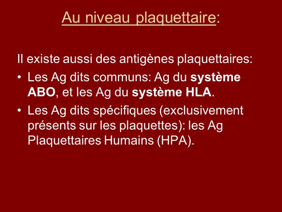 Au niveau plaquettaire: Il existe aussi des antigènes plaquettaires: Les Ag dits communs: Ag du système ABO, et les Ag du système HLA. Les Ag dits spé