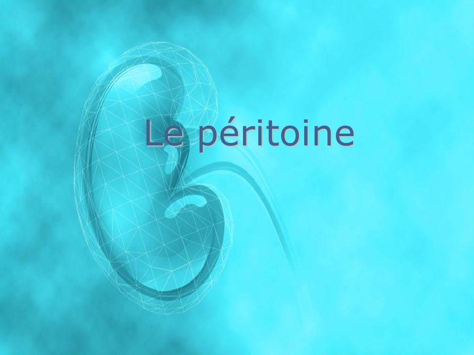 En dialyse péritonéale, on utilise le péritoine,membrane naturelle qui tapisse la cavité abdominale et enveloppe les organes qui sy trouvent.