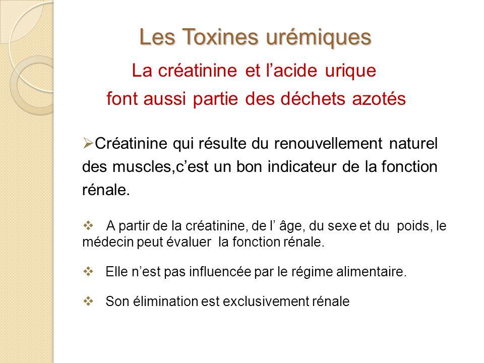 La créatinine et lacide urique font aussi partie des déchets azotés Les Toxines urémiques Créatinine qui résulte du renouvellement naturel des muscles