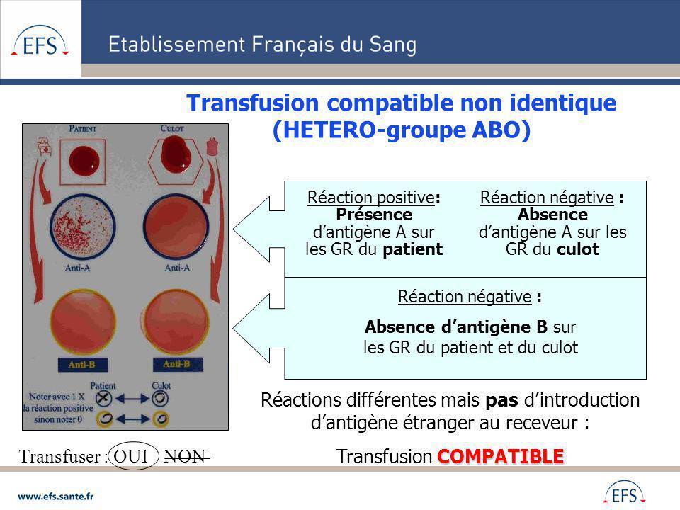 Transfusion compatible non identique (HETERO-groupe ABO) Réactions différentes mais pas dintroduction dantigène étranger au receveur : COMPATIBLE Tran