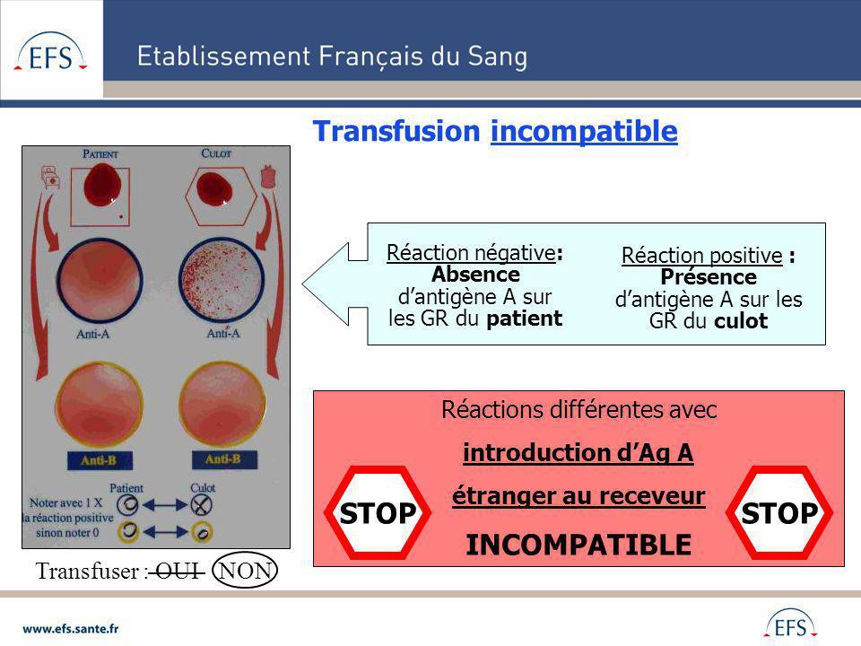 Transfusion incompatible Transfuser : OUI NON Réactions différentes avec introduction dAg A étranger au receveur INCOMPATIBLE STOP Réaction positive :