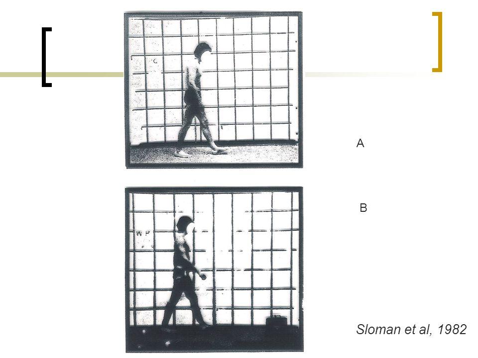 Sloman et al, 1982 A B