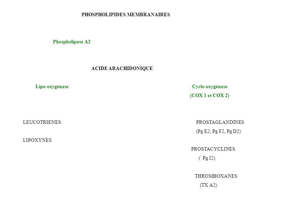 PHOSPHOLIPIDES MEMBRANAIRES Phospholipase A2 ACIDE ARACHIDONIQUE Lipo-oxygénase Cyclo-oxygénase (COX 1 et COX 2) LEUCOTRIENES PROSTAGLANDINES (Pg E2,