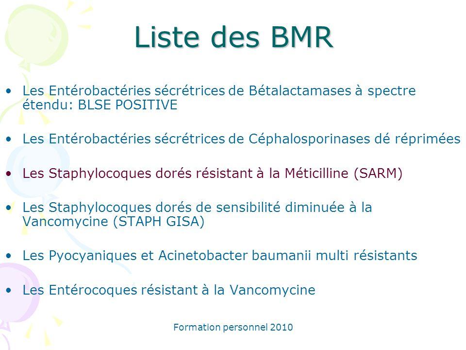 Formation personnel 2010 Liste des BMR Les Entérobactéries sécrétrices de Bétalactamases à spectre étendu: BLSE POSITIVE Les Entérobactéries sécrétric