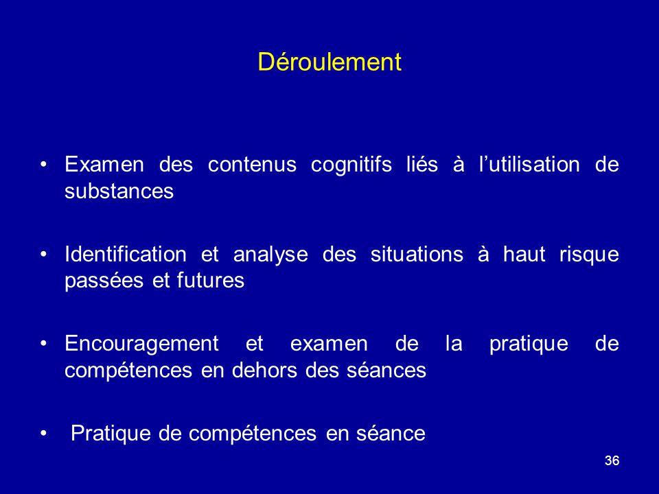 Déroulement Examen des contenus cognitifs liés à lutilisation de substances Identification et analyse des situations à haut risque passées et futures