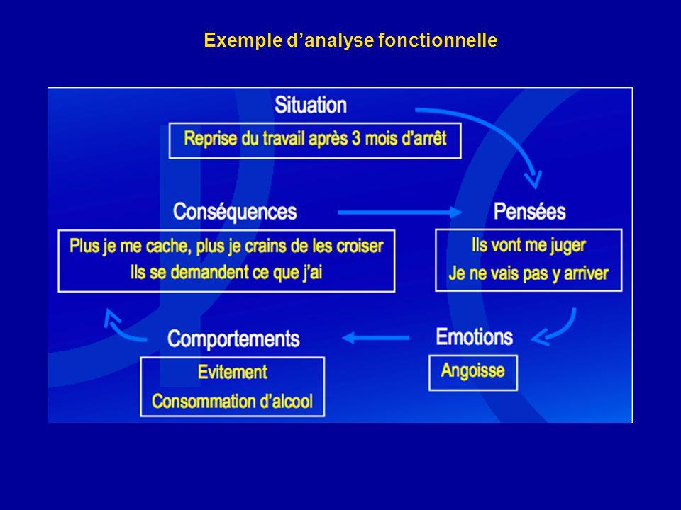 Exemple danalyse fonctionnelle