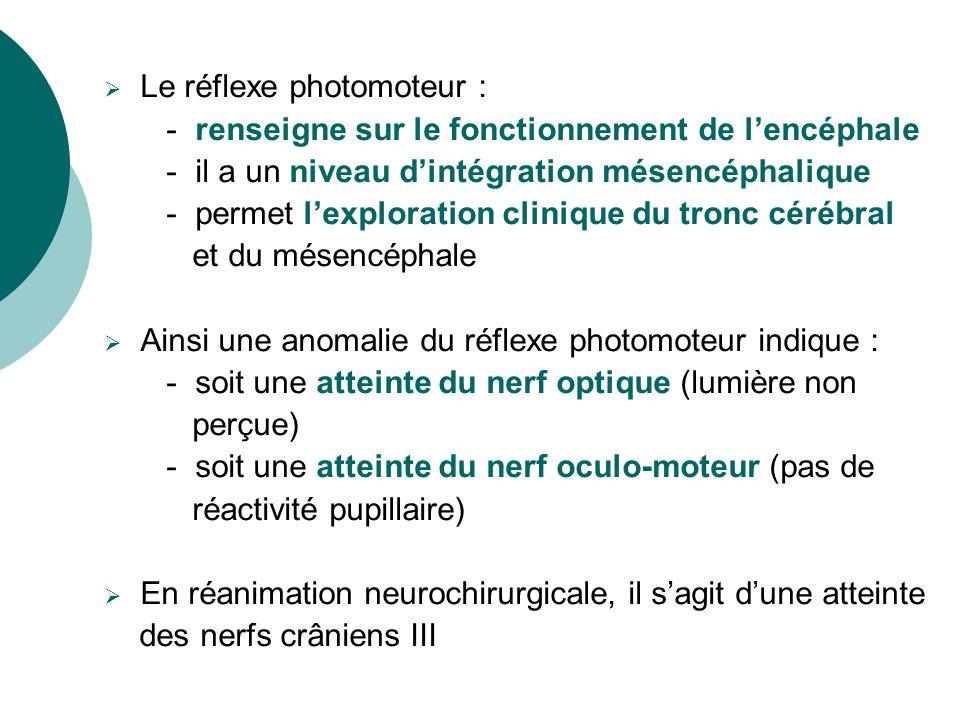 Le réflexe photomoteur : - renseigne sur le fonctionnement de lencéphale - il a un niveau dintégration mésencéphalique - permet lexploration clinique