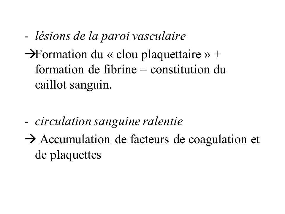 -lésions de la paroi vasculaire Formation du « clou plaquettaire » + formation de fibrine = constitution du caillot sanguin. -circulation sanguine ral