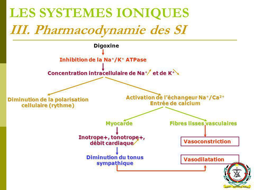 LES SYSTEMES IONIQUES III. Pharmacodynamie des SI Digoxine Inhibition de la Na + /K + ATPase Concentration intracellulaire de Na + et de K + Diminutio