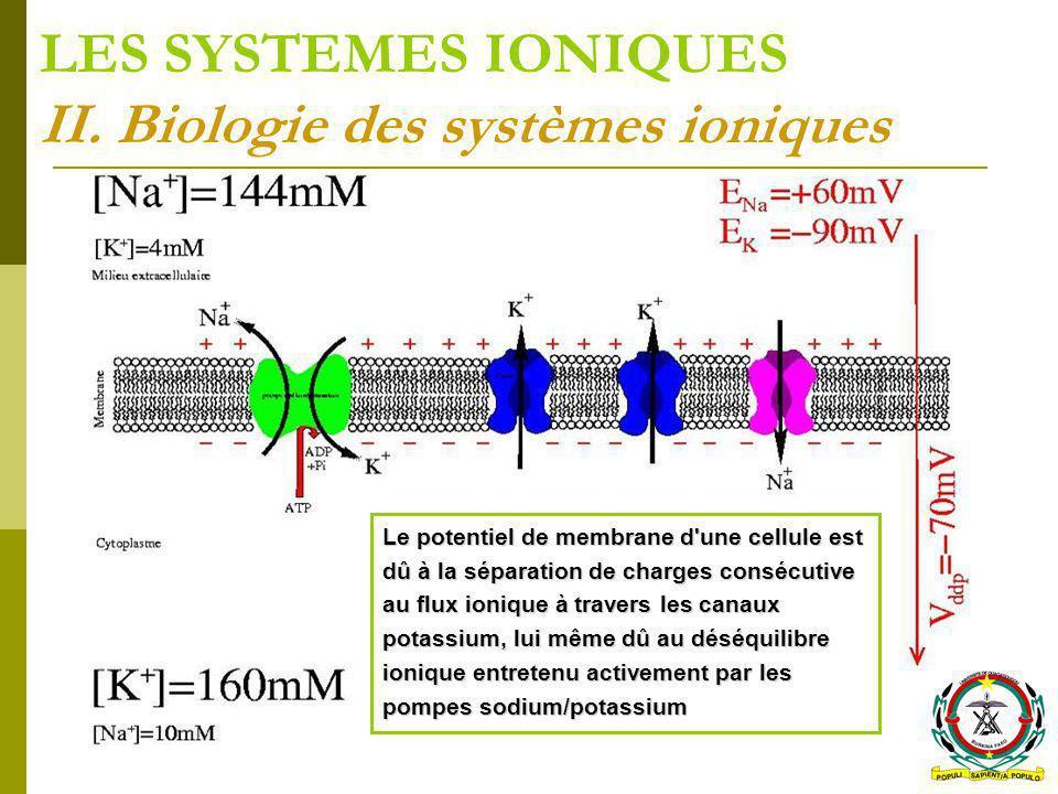 LES SYSTEMES IONIQUES II. Biologie des systèmes ioniques Le potentiel de membrane d'une cellule est dû à la séparation de charges consécutive au flux