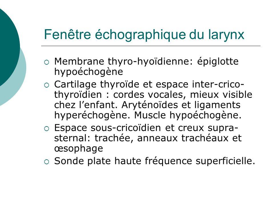 Fenêtre échographique du larynx Membrane thyro-hyoïdienne: épiglotte hypoéchogène Cartilage thyroïde et espace inter-crico- thyroïdien : cordes vocales, mieux visible chez lenfant.