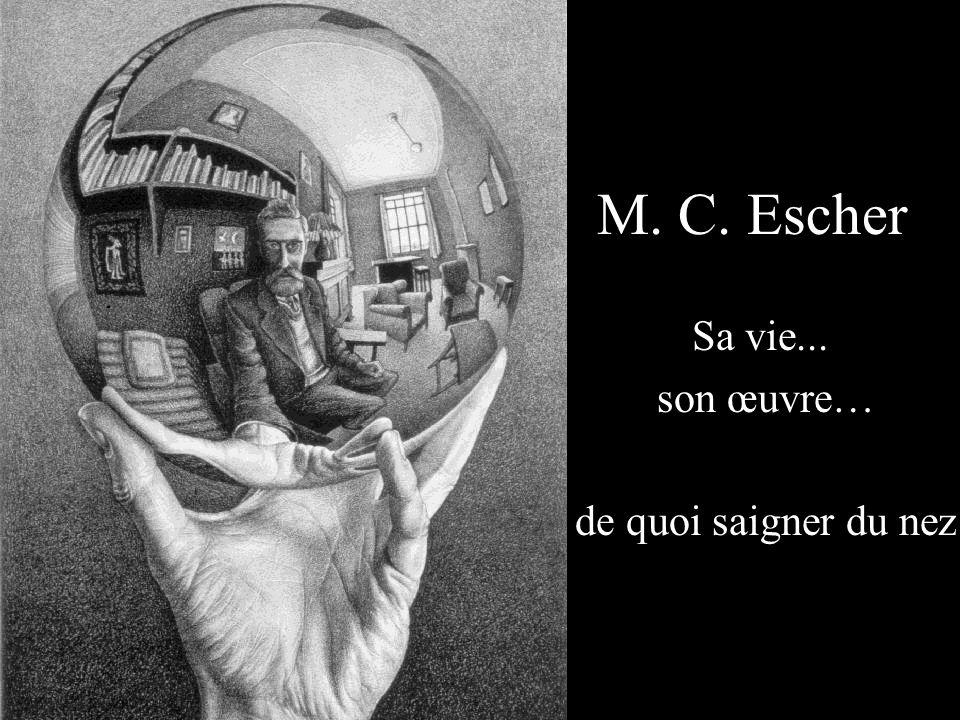 M. C. Escher Sa vie... son œuvre… de quoi saigner du nez