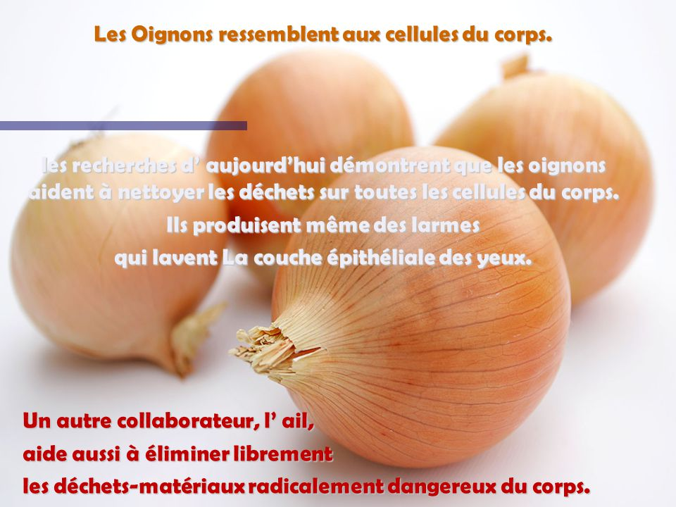 LOrange, la pamplemousse, et les autres fruits Citriques ressemblent aux glandes des seins chez les femmes Ils stimulent la santé des seins et le mouvement des internes et externes des lymphes dans les seins.