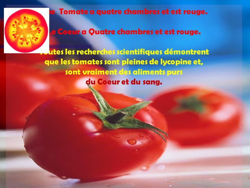 Une Tomate a quatre chambres et est rouge.Le Coeur a Quatre chambres et est rouge.