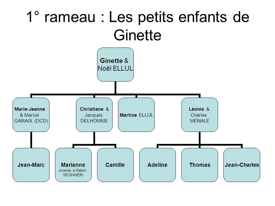 1° rameau : Les petits enfants de Ginette Ginette & Noël ELLUL Marie-Jeanne & Marcel GARAIX (DCD) Jean-Marc Christiane & Jacques DELHOMME Marianne (ma