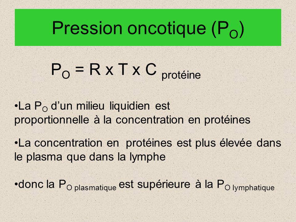 Pression oncotique (P O ) P O = R x T x C protéine La P O dun milieu liquidien est proportionnelle à la concentration en protéines La concentration en protéines est plus élevée dans le plasma que dans la lymphe donc la P O plasmatique est supérieure à la P O lymphatique