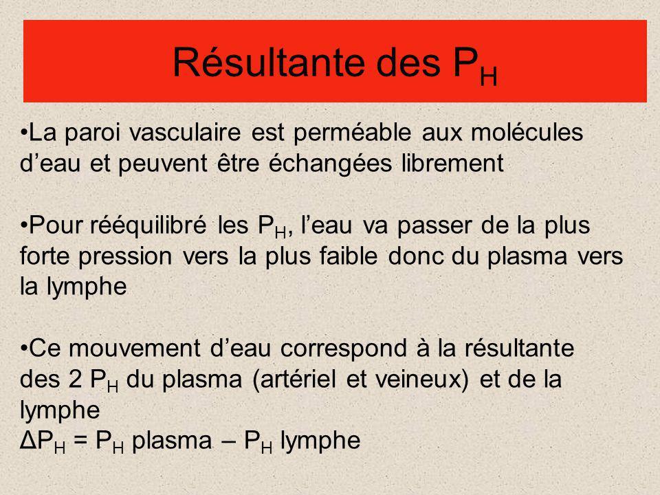 Production de la lymphe Circulation sanguine P h = P o= ΔP h =ΔP o = Bilan pôle artériel P h = P o= ΔP h =ΔP o = Bilan pôle veineux