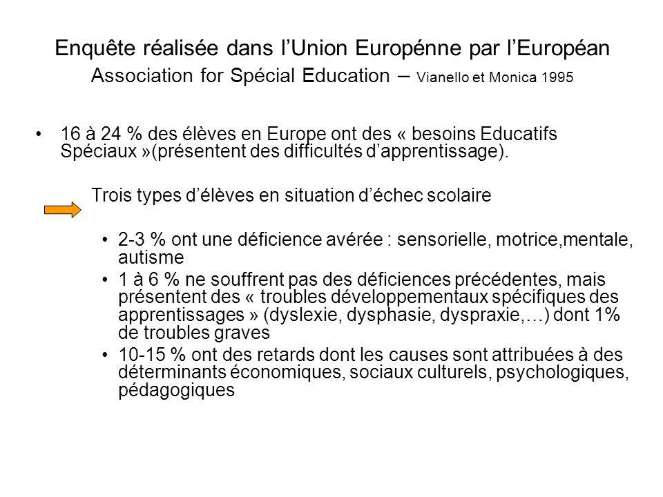 Enquête réalisée dans lUnion Europénne par lEuropéan Association for Spécial Education – Vianello et Monica 1995 16 à 24 % des élèves en Europe ont des « besoins Educatifs Spéciaux »(présentent des difficultés dapprentissage).
