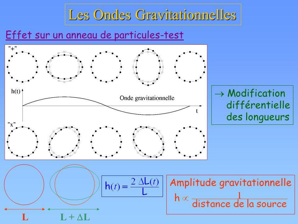 Les Ondes Gravitationnelles Effet sur un anneau de particules-test L L + L Modification différentielle des longueurs Amplitude gravitationnelle