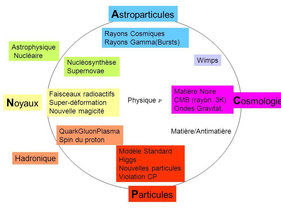 P articules N oyaux Hadronique A stroparticules C osmologie Astrophysique Nucléaire Modèle Standard Higgs Nouvelles particules Violation CP Faisceaux