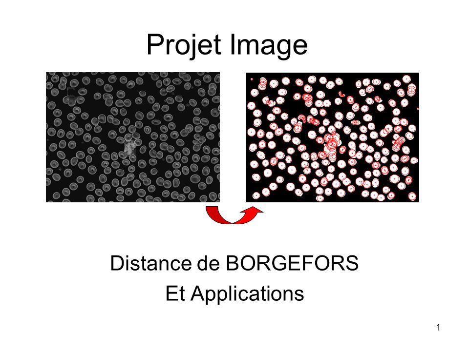 1 Projet Image Distance de BORGEFORS Et Applications