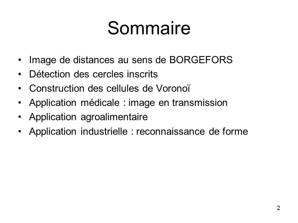 2 Sommaire Image de distances au sens de BORGEFORS Détection des cercles inscrits Construction des cellules de Voronoï Application médicale : image en